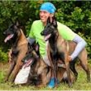 AMERICAN WORKING MALINOIS ASSOCIATION WORKING DOG CHAMPIONSHIPS